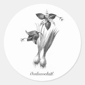 Vintage tiger flower etching sticker