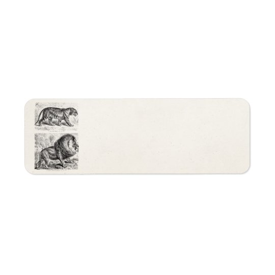 Vintage Tiger Illustration Tigers Template Return Address Label
