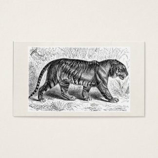Vintage Tiger Illustration Wild Tigers Template Business Card