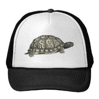 Vintage Tortoise Illustration Trucker Hats