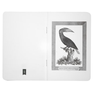 Vintage toucan bird etching journal