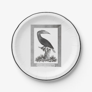 Vintage toucan bird etching paper plate 7 inch paper plate