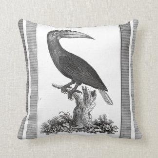 Vintage toucan bird etching pillow