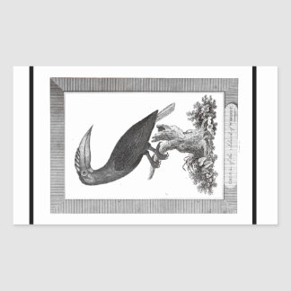Vintage toucan bird etching sticker
