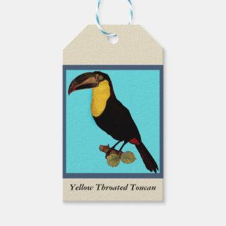 VINTAGE TOUCAN BIRD. YELLOW-THROATED TOUCAN