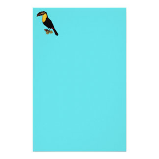 VINTAGE TOUCAN BIRD. YELLOW-THROATED TOUCAN PAPER