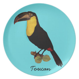 VINTAGE TOUCAN BIRD. YELLOW-THROATED TOUCAN PLATE