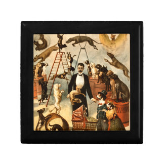 Vintage Trained Circus Dog Act Trick Dogs1899 Gift Box