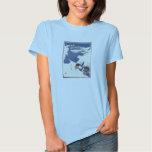 Vintage Travel Poster Ad Retro Prints Tshirts