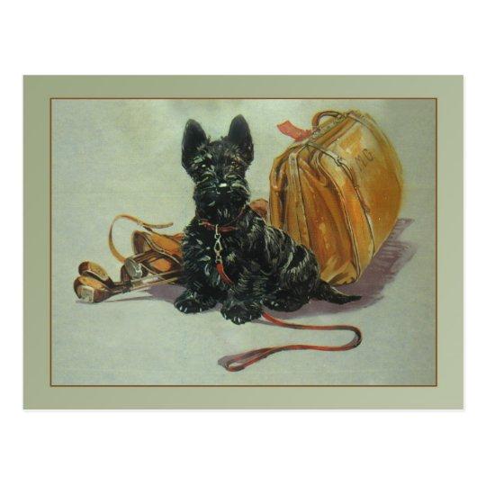 Vintage Travelling Scottie Dog Postcard