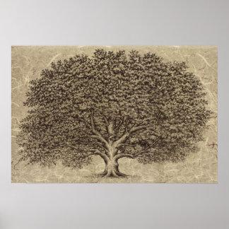 Vintage Tree Poster