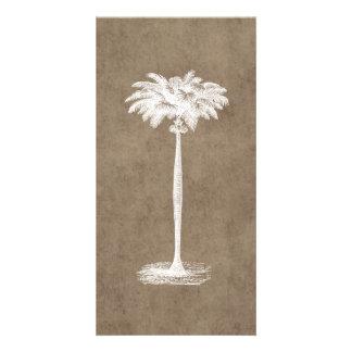 Vintage Tropical Island Palm TreeTemplate Blank Custom Photo Card