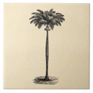 Vintage Tropical Island Palm TreeTemplate Blank Tile