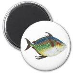 Vintage Tropical Opah Fish, Marine Aquatic Animal 6 Cm Round Magnet