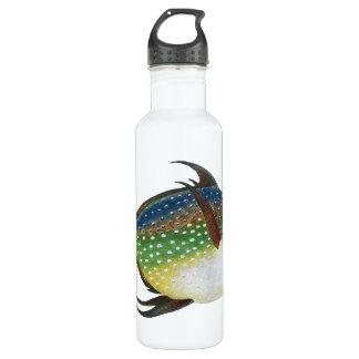Vintage Tropical Opah Fish, Marine Aquatic Animal 710 Ml Water Bottle