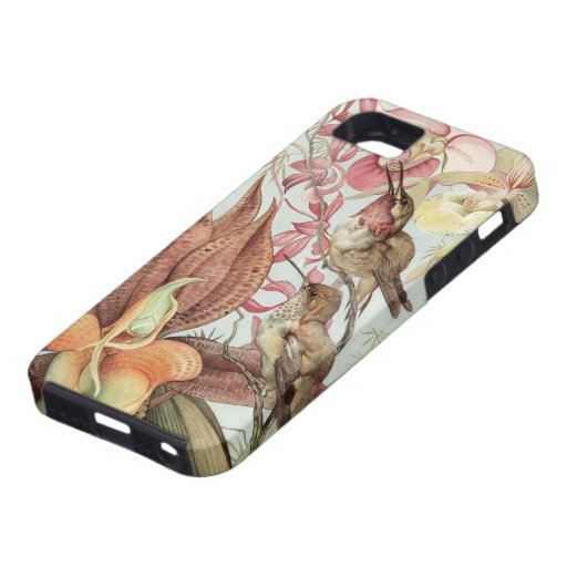 Vintage Tropical Orchids, Flowers and Hummingbirds iPhone 5 Case