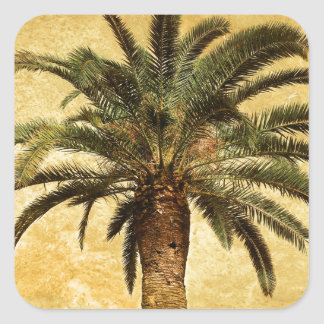 Vintage Tropical Palm Tree Square Sticker