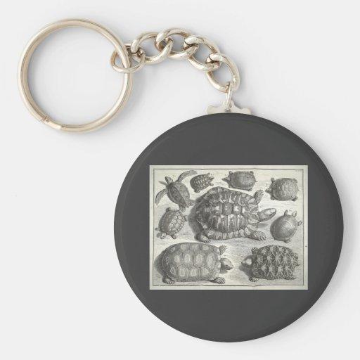 Vintage Turtle Etching Key Chain
