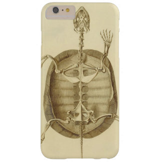 Vintage Turtle Skeleton Barely There iPhone 6 Plus Case
