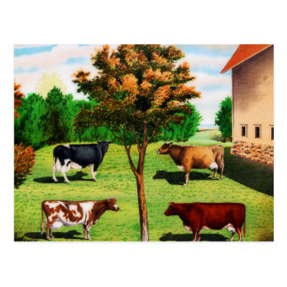 Vintage Typical Cow Breeds On The Farm Postcard
