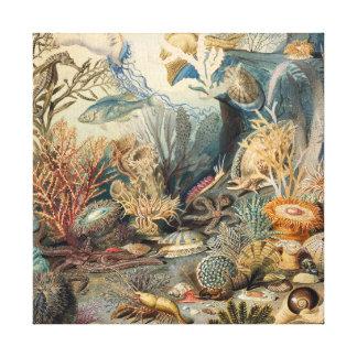 Vintage Under the Sea | Canvas Print