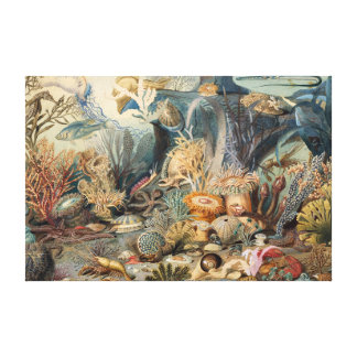 Vintage Under the Sea | Canvas Print