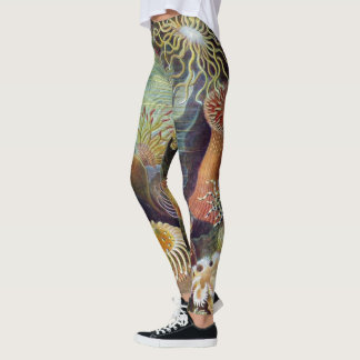 Vintage Underwater Sea Anemones by Ernst Haeckel Leggings
