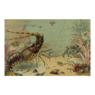 Vintage Underwater Sea Life, Animals in the Ocean Poster