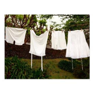 Vintage underwear laundry postcard