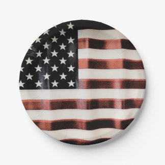Vintage USA flag 7 Inch Paper Plate