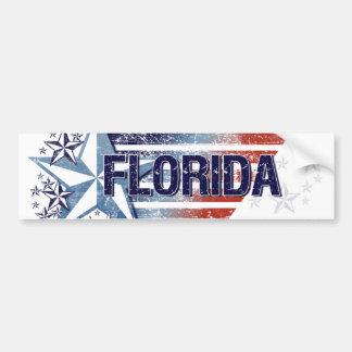 Vintage USA Flag with Star – Florida Bumper Sticker
