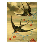 Vintage Valentine Barn Swallows With Hearts Postcard