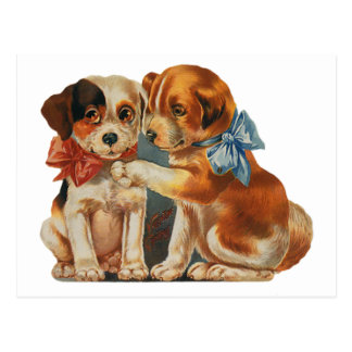Vintage Valentine s Puppy Dog Love Two Mutts Bows Post Card