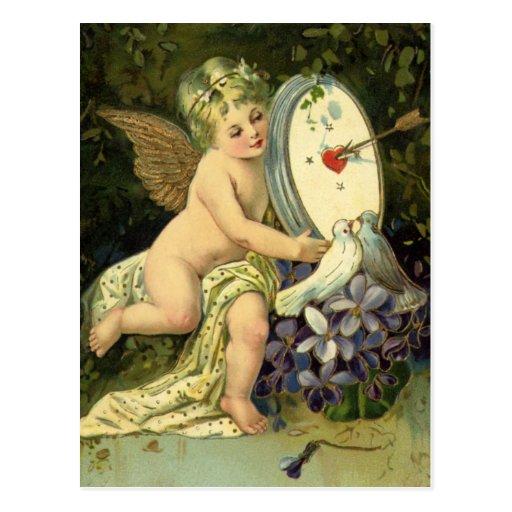 Vintage Valentines,  Victorian Cherub w Love Birds Post Card