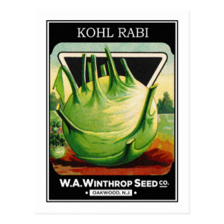 Vintage Vegetable Kohl Rabi Seed Package Postcard