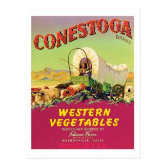 Vintage Vegetables Food Product Label Postcard