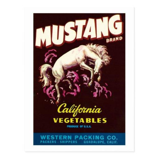 Vintage Vegetables Food Product Label Post Cards