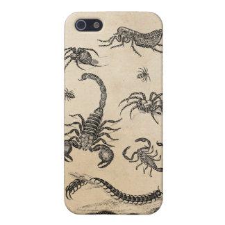 Vintage Vermin Scorpion Spider Flea Pink iPhone 5/5S Cases