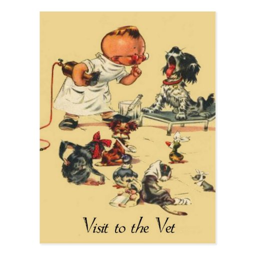 Vintage Veterinarian - Visit to the Vet Post Card