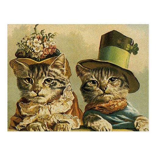 Vintage Victorian Cats in Hats, Funny Silly Humor Postcard