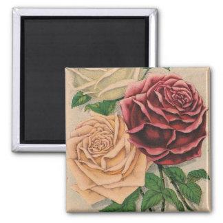 Vintage Victorian Roses Fridge Magnet