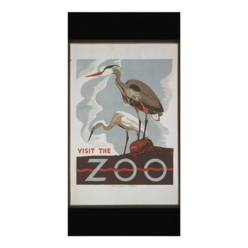 Vintage Visit the Zoo Customized Photo Card