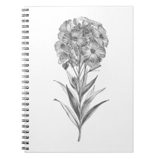 Vintage Wall flower etching journal