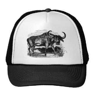 Vintage Water Buffalo Retro Bison Illustration Cap