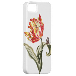 Vintage Watercolor Tulip Butterfly | Garden iPhone 5 Cover