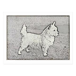 Vintage West Highland White Charcoal Postcard