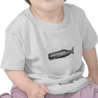 Vintage Whale Tshirts