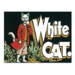 Vintage White Cat Cigar Label Art Postcard