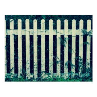 Vintage White Fence Postcard