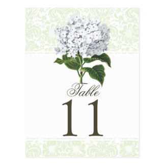 Vintage White Hydrangea Wedding Table Number Postcard